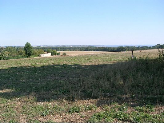 Un Terrain Agricole De 32900 m2 (3.29 H) 7 Km à Mostaganem