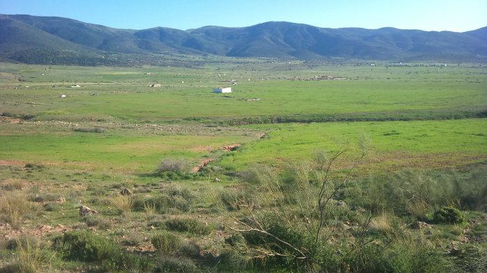 قطعة ارض (20هكتار) تابعة لدائرة المعذر بحوالي 3.5 كم (طريق الشمرة) .ولاية باتنة