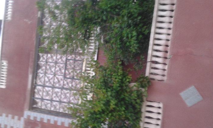 منزل بسدراتة ولاية سوق اهراس