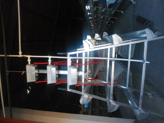 صنع معدات ولوازم تربية الدواجن