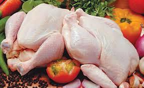 دجاج وداند طازج ومجمد