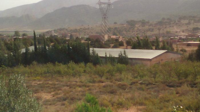 Terrain integret au PDUA commune de Fesdis lieu dit TAGHARBIT (Kasrou)