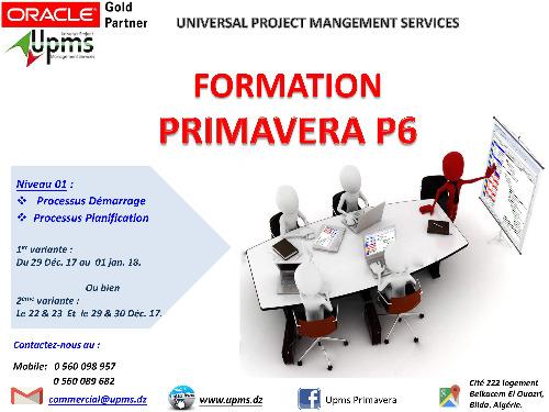 Formation Primavera P6