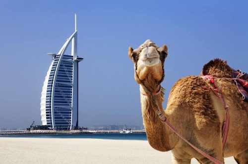 visa Dubaï