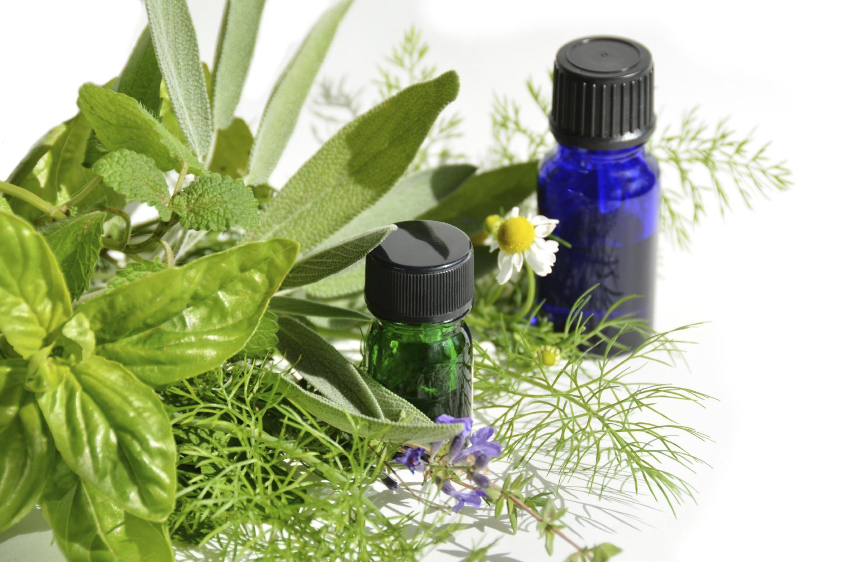 Laboratoires Nature: Extraits et huiles de plantes végétales à usage médical, extraits naturels de plantes pour teinte durable pour cheveux.