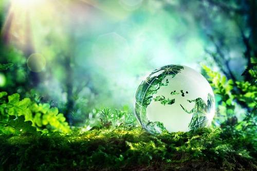 Bureau d'études en Environnement, Expertise & Consulting