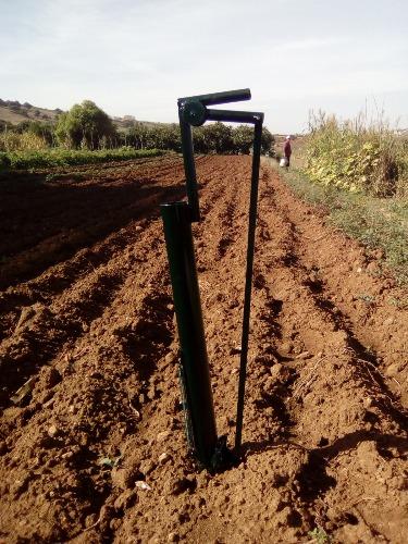 Plantoir poivrons oignonsf