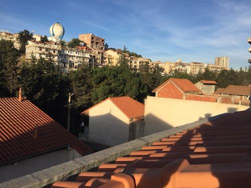 Palladium Immobilier: Agence immobilière