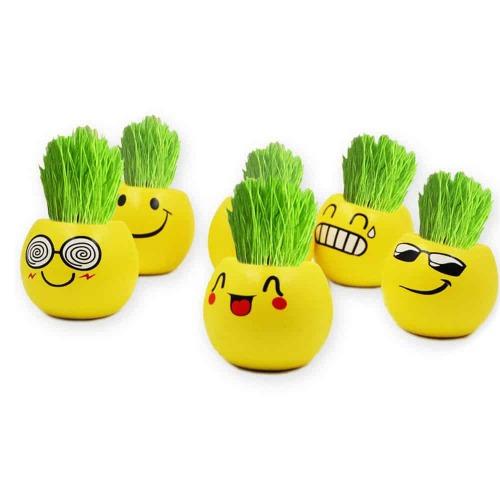 Ecoey Smile Face Pot De Plantes