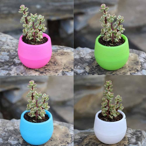 Ecoey Mini pot de fleur en plastique
