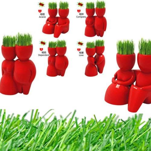 Ecoey love Mini pot de plantes cheveux d'homme