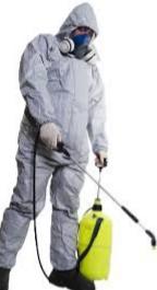 Nettoyage l'opération 3D (dératisation Désinsectisation Désinfection)