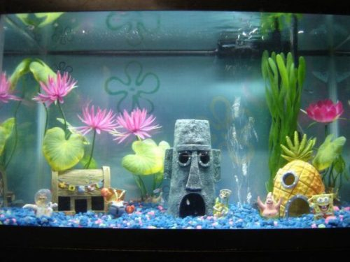 Artisanat vente pièces de décoration spongebob aquarium 10 pcs sur commande tel 05 54 99 16 21
