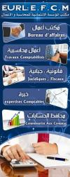 تقديم الخدمات في مجال الإئتماني -المحاسبة - الآعمال